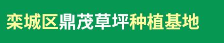 栾城草坪专业从事各地绿化工程施工